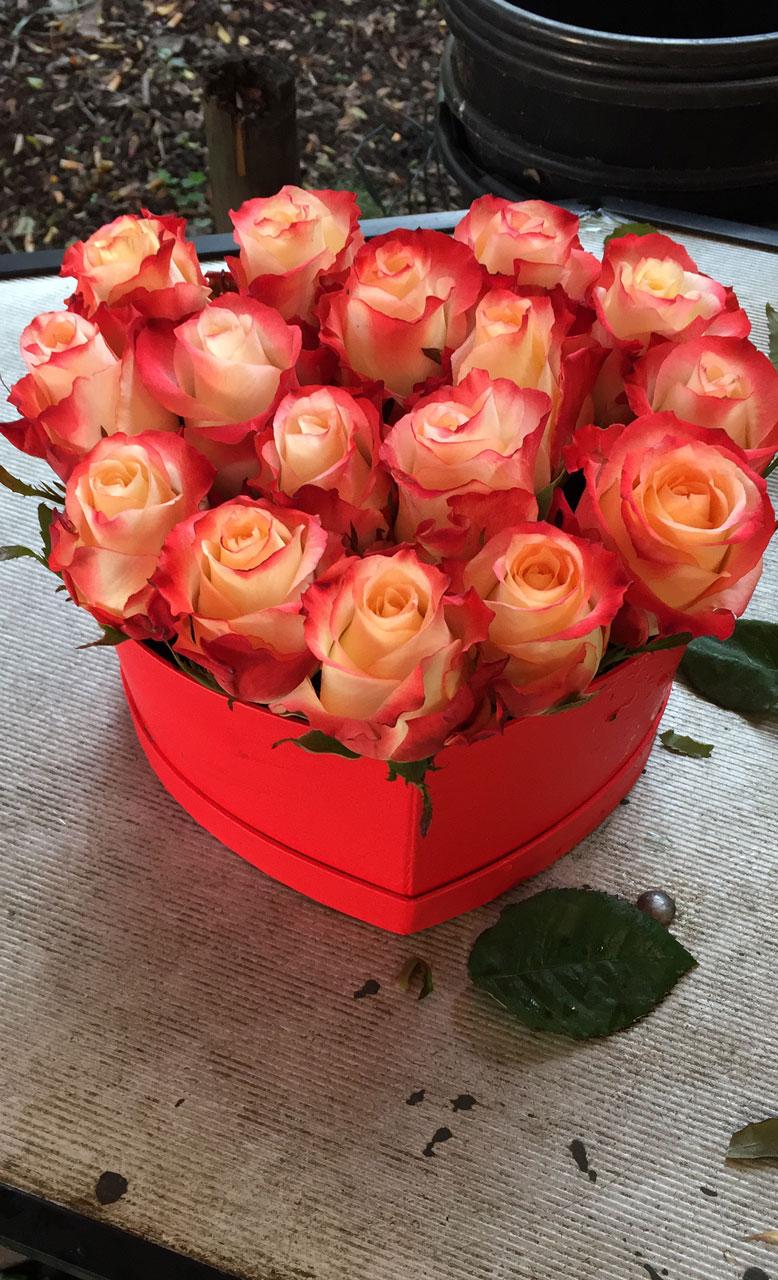 flower box rose a forma di cuore